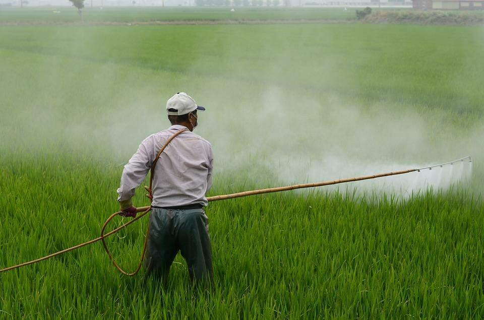 Brasil, campeão mundial em consumo de agrotóxicos