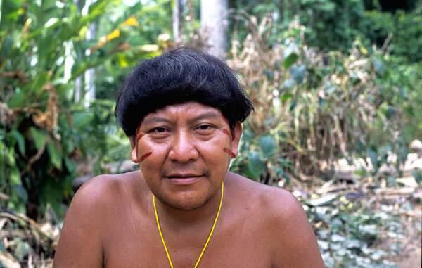 Xamã Yanomami, Davi Kopenawa. O garimpo ilegal está ameaçando a vida dos Yanomami.  Fiona Watson/Survival